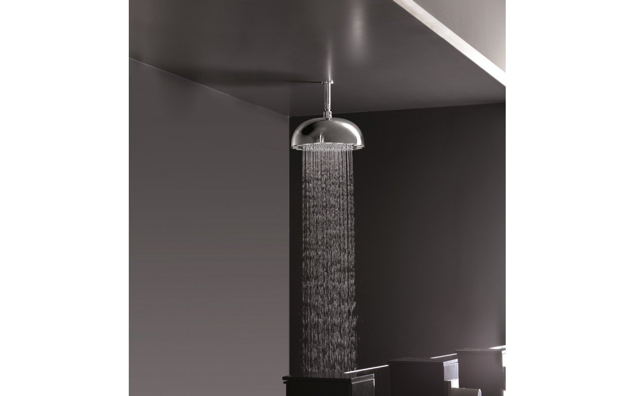 DynamoWCRD-300Top-Mounted Shower Head in Chrome picture № 0
